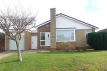 Detached Bungalow for sale in The Oval, Tickhill
