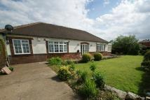 2 bed Detached Bungalow for sale in 37 Stainforth Road