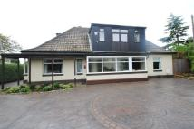 4 bed Detached house for sale in 16 Cantley Lane....