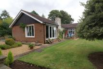 3 bed Detached Bungalow in 2 Oaklands Drive...