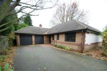 4 bed Detached Bungalow in The Gardens, Bessacarr...