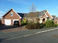 4 bedroom Detached Bungalow for sale in Hampstead Drive...