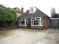 Detached Bungalow for sale in Dale Road, Spondon