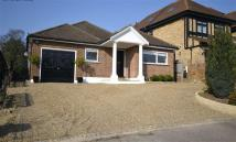 Newmans Way Bungalow to rent