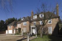 Totteridge Village Detached property to rent