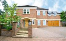 6 bedroom Detached home to rent in Soames Place...