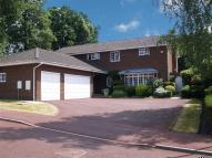 Detached property to rent in Coombehurst Close...