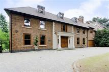 Link Detached House in Pine Grove, Totteridge...