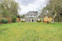 Detached house to rent in Park Road, New Barnet...