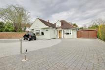 4 bedroom Detached property to rent in Parkgate Avenue...