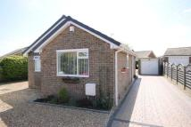 Detached Bungalow in Fir Tree Drive, Filey...
