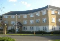 2 bed Ground Flat for sale in CASTLEVIEW CATCHMENT