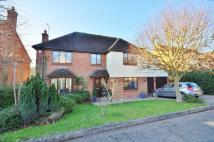 Detached home in South View, Dunmow