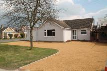 Detached Bungalow in Ness Road, Burwell