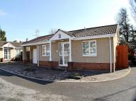 Bungalow to rent in Withy Close, Nailsea...