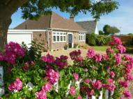 Detached Bungalow for sale in Pagham