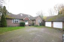 Detached Bungalow in Springfields, Broxbourne...