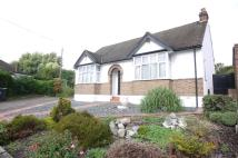 Detached Bungalow in King James Avenue...