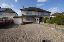 Fairley Way semi detached house to rent