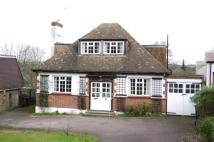 Bungalow to rent in Hill Rise, Cuffley, EN6