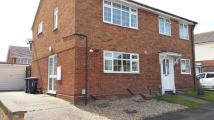 3 bed semi detached house in Bedford