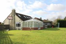 4 bed Detached Bungalow for sale in Manor Close, Icklesham...