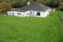 Bungalow to rent in Bishopsteignton
