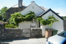 Cottage to rent in TAMERTON FOLIOT