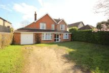Detached house for sale in Intwood Road...