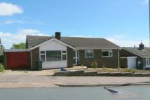 Bungalow to rent in Exmouth