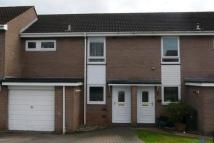 3 bed property in Exmouth