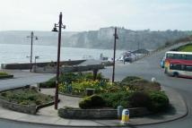 1 bed Apartment to rent in Seaton