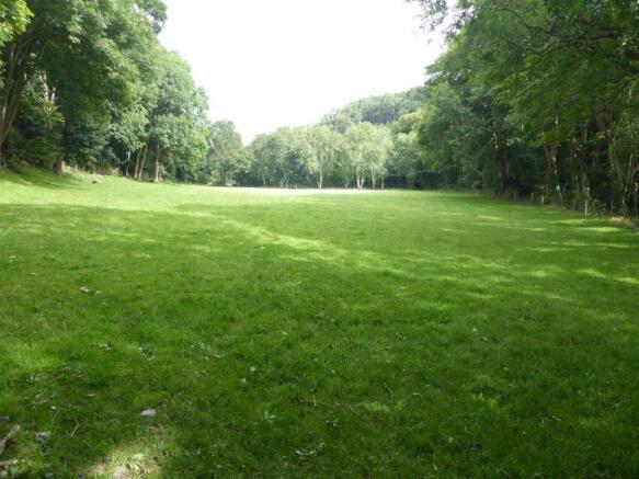 The Meadow Field