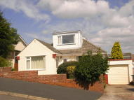 Bungalow to rent in Windmill Road, Paignton