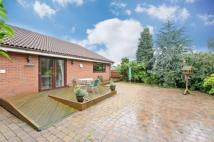 3 bedroom Detached Bungalow for sale in Upper Passmonds Grove...