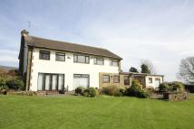 4 bed Detached home for sale in Norford Way, Bamford...