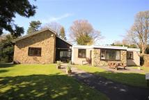 5 bedroom Detached Bungalow for sale in Bury Road, Bamford...