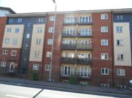 New North Road Apartment to rent