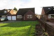 3 bed Bungalow to rent in Claymore Drive, Hitchin...