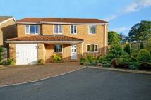 5 bed Detached house in 43 St Mark's Avenue...