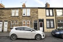 Elmwood Street Terraced property to rent