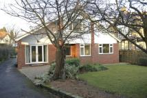 Detached home in Cornwall Road, Harrogate...