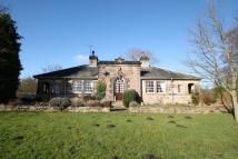 Detached Bungalow to rent in Stockeld Park, Wetherby...