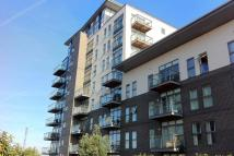 1 bed Flat to rent in Clovelly Place...