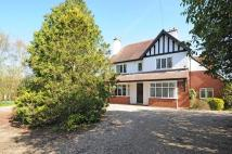 5 bed Detached house in Clinton House...