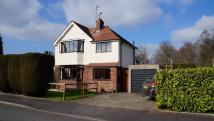 3 bedroom semi detached house for sale in Grace Road...