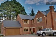 Detached house for sale in Chestnut Walk...