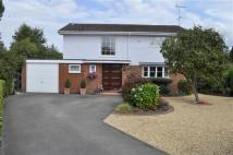 4 bed Detached house to rent in Willow Dale...