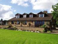 5 bedroom Detached home for sale in Hilderstone Road...