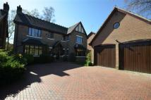 5 bedroom Detached house in Airdale Grove, Stone